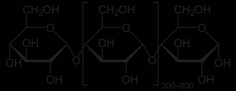 The No-amylose Diet – Mold Environmental